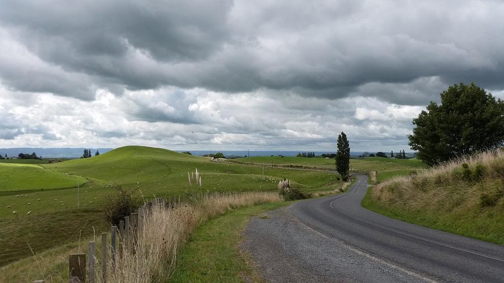 NZ-north61